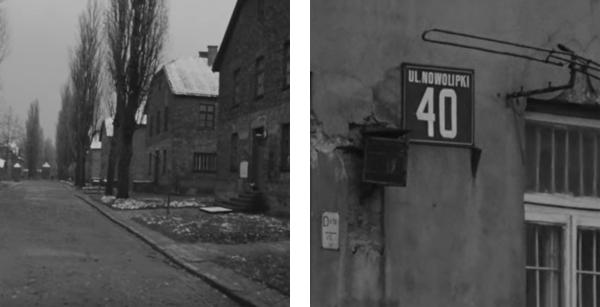 German Concentration Camps Factual Survey: Documentando el Horror | David Flórez