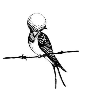 Agrupación Señor Serrano | Birdie