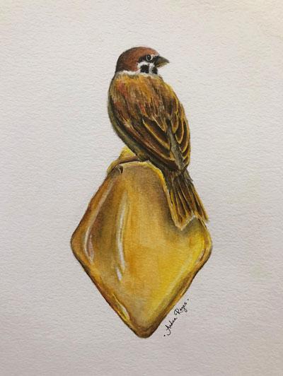 Andrea Reyes | Pájaro sobre ámbar