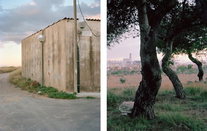 David Mocha | Bonavista