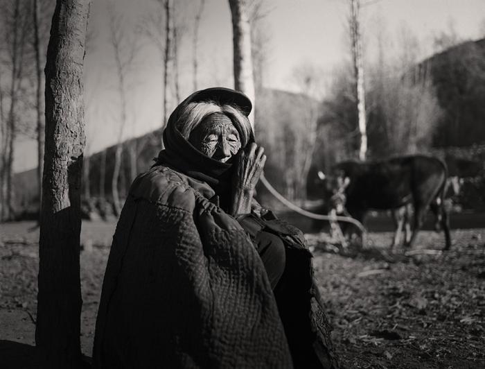 Li Honger