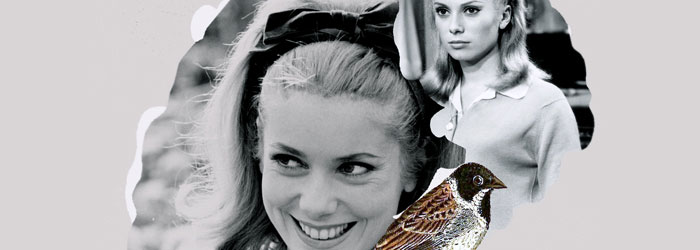 Francisca Pageo | Catherine Deneuve