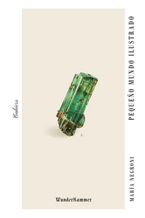 María Negroni | Pequeño mundo ilustrado