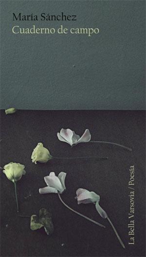 María Sánchez | Cuaderno de campo