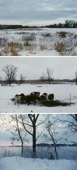James Benning | Landscape suicide