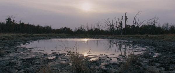 Álvaro Peña | Vivir el paisaje